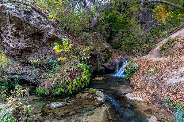 texas camping bend state park river running through a ravine forested valley