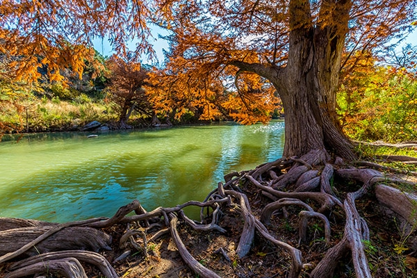 texas camping view of river with fall vibrant colored trees
